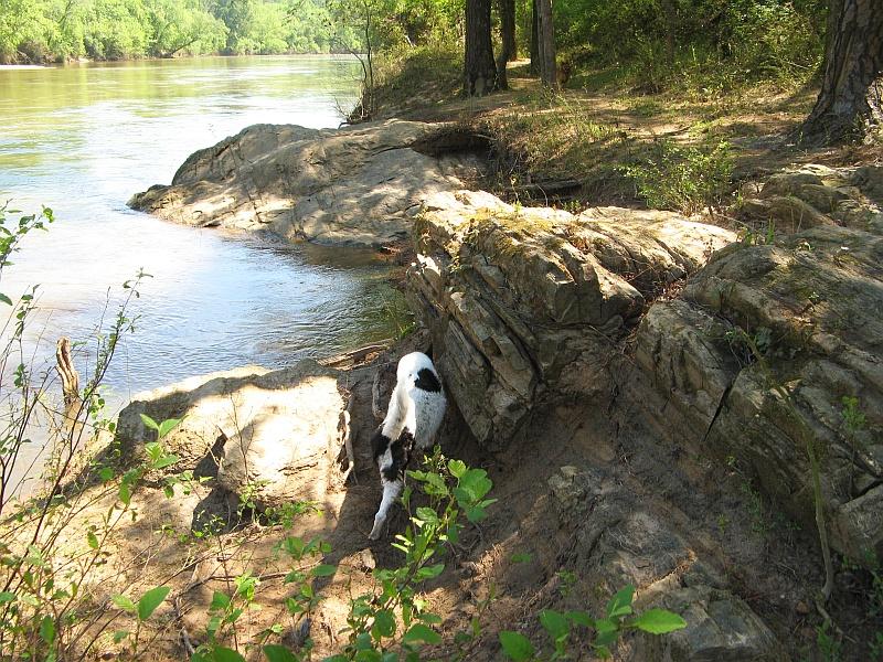 Cliff climber Lucky