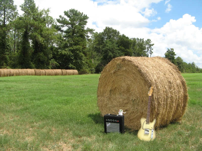 Hay Bale and Plush Amp