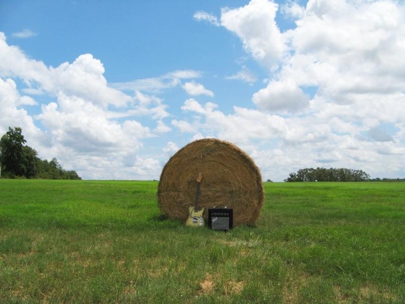 Plush Amp in Field
