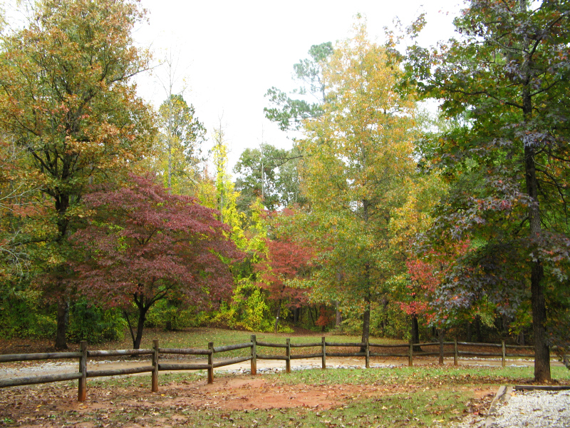 Dauset Trails Fall