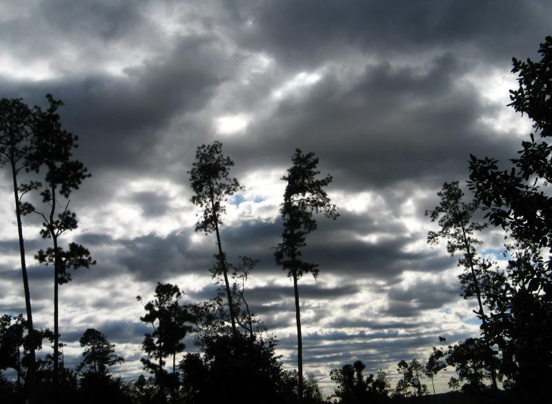 Grey sky