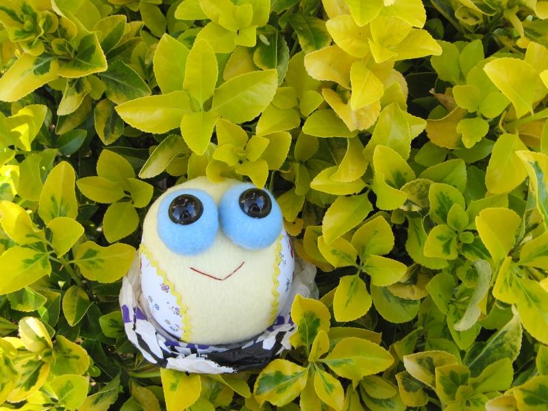 Tweety Bird in the bushes