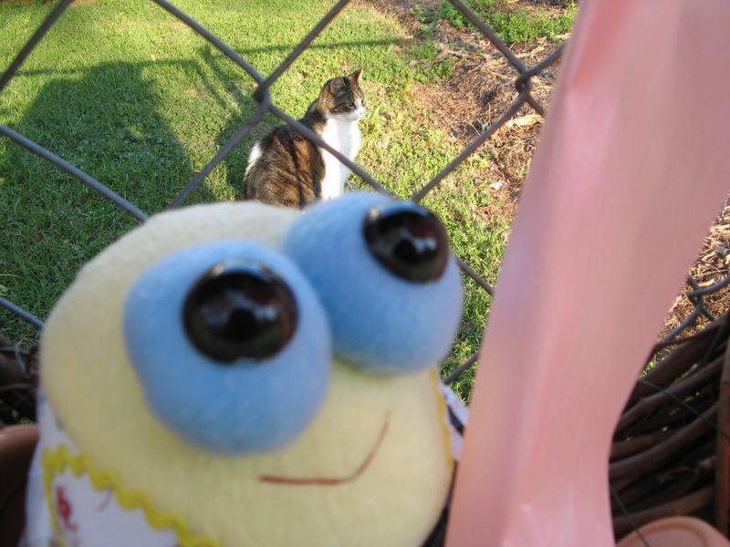 Tweety Bird with Slash the kitty cat