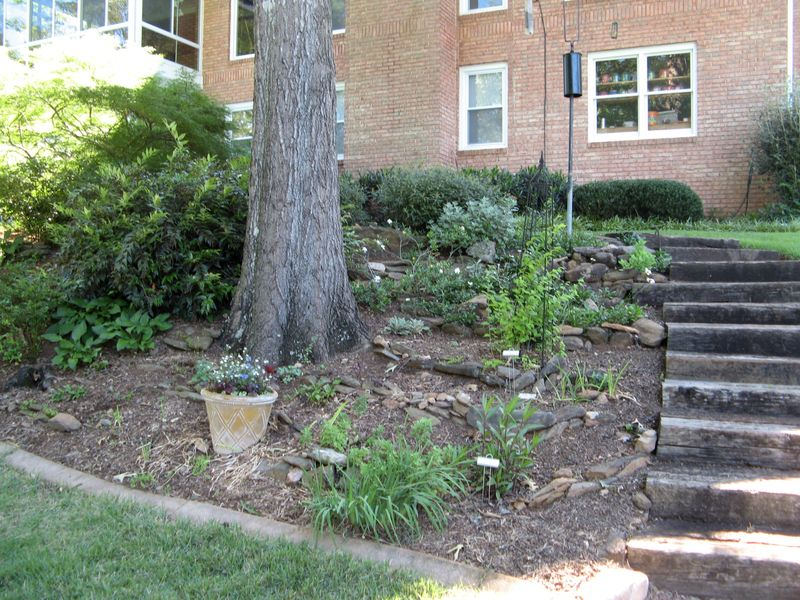 Dow Lake Henry County Georgia Garden Tour 2012 backyard