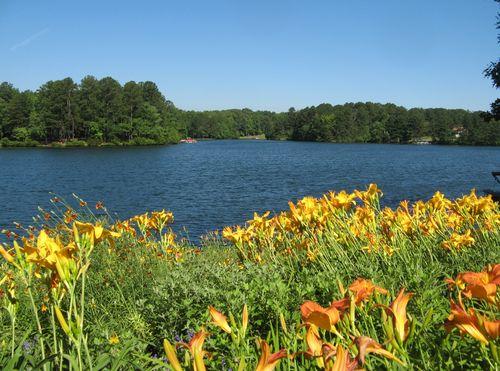 Dow Lake Henry County Georgia Garden Tour 2012 orange daylilies on the lake