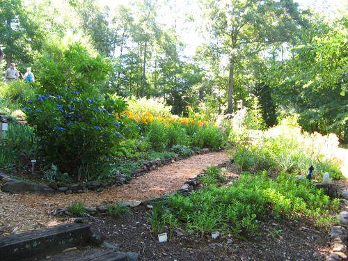 Dow Lake Henry County Georgia Garden Tour 2012 path lacecap hydrangea daylilies
