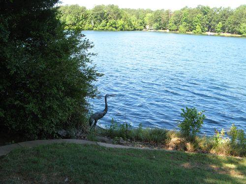Dow Lake Henry County Georgia Garden Tour 2012 heron statue lake