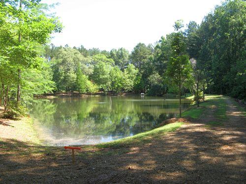 Garden Tour Henry County Georgia 2012 pond