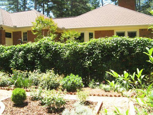 2012 Henry County Georgia Garden Tour vine covered fence