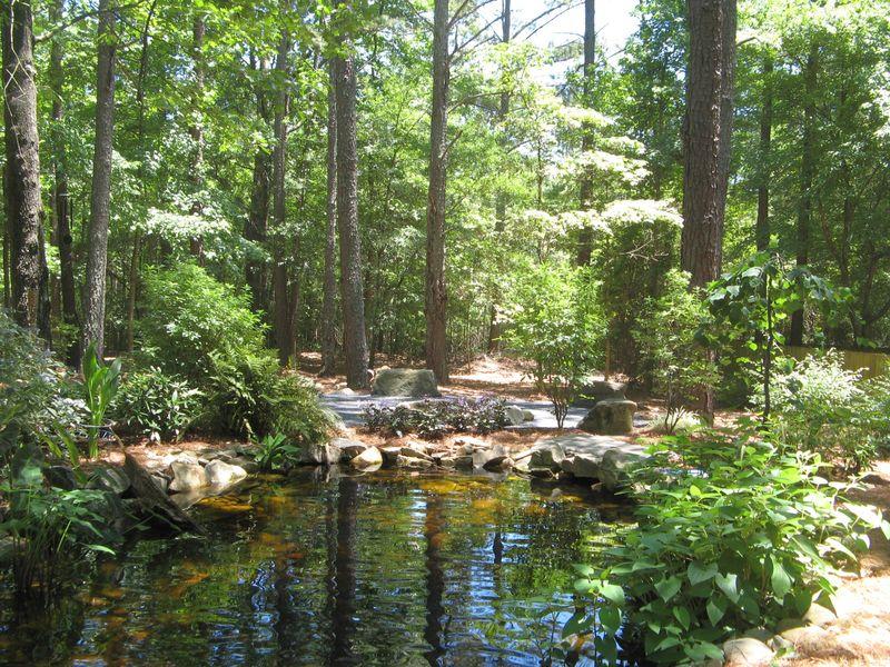 A Henry County Georgia Garden Tour 2012 pond
