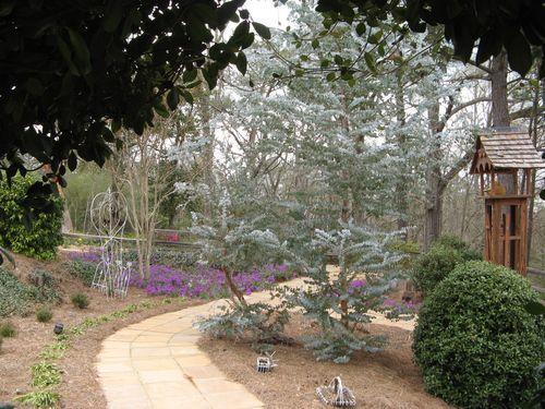 Indian Springs Georgia Whimsical Garden eucalyptus tree
