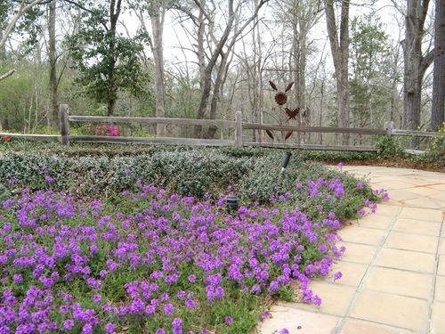 Indian Springs Georgia Whimsical Garden purple verbina