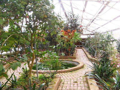 Massee Lane Camellia Gardens formal greenhouse circle pool