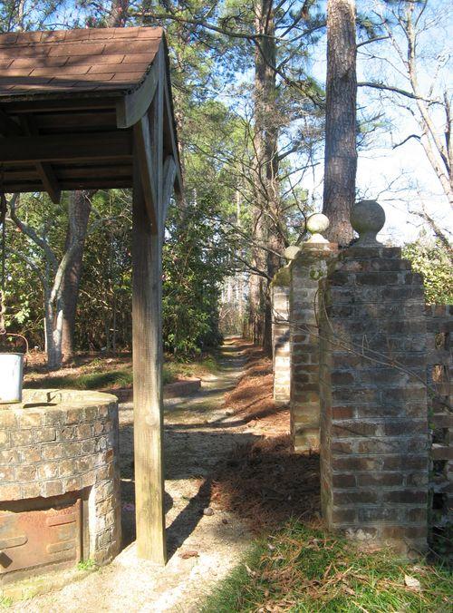Massee Lane Camellia Gardens Wishing Well path
