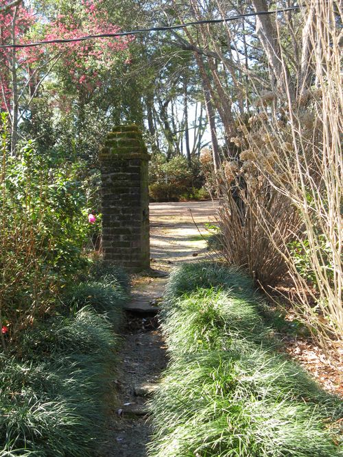 Massee Lane Camellia Gardens greenhouse path