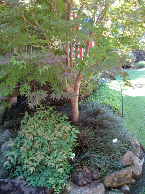 Henry County Georgia Garden Tour 2012 front closeup
