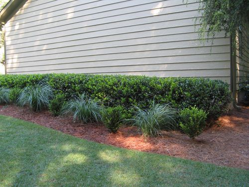 Henry County Georgia Garden Tour 2012 side