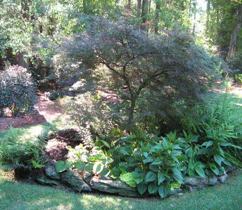 Henry County Georgia Garden Tour 2012 japanese maple