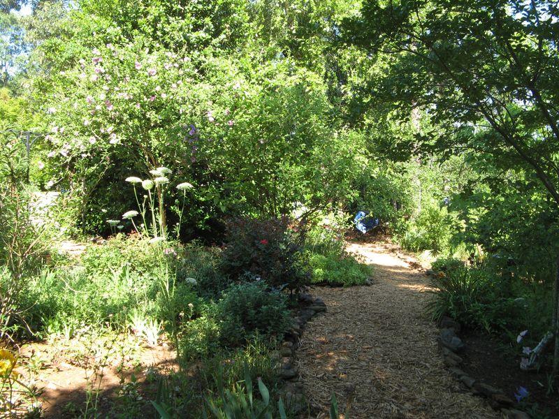 Dow Lake Henry County Georgia Garden Tour 2012 path