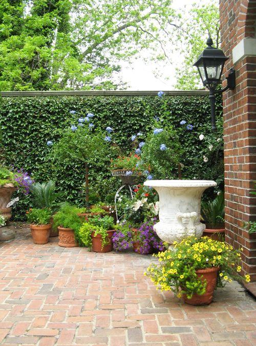 Macon garden