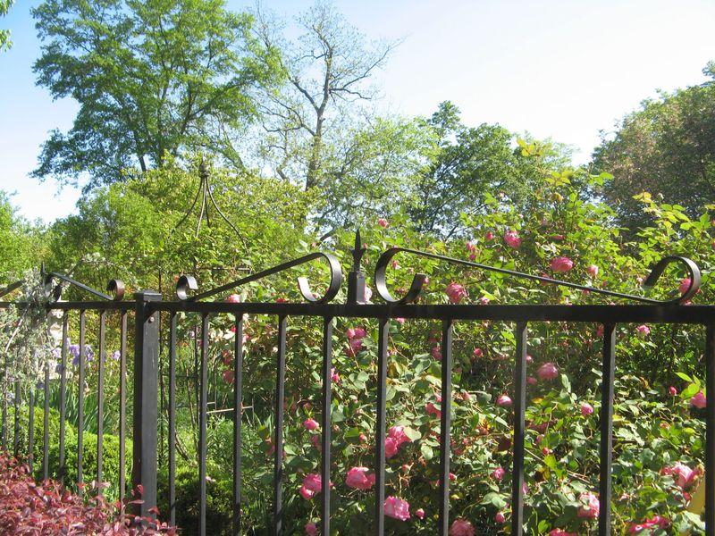 Athens Georgia Garden Tour 2013 neighbors garden