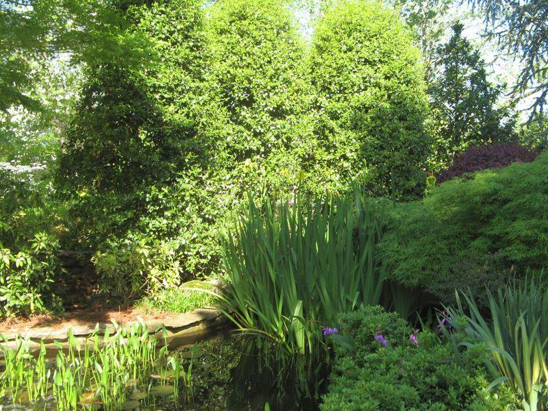 Athens Georgia Garden Tour 2013 pond detail