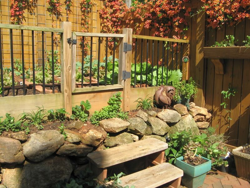 Athens Georgia Garden Tour 2013 veg garden