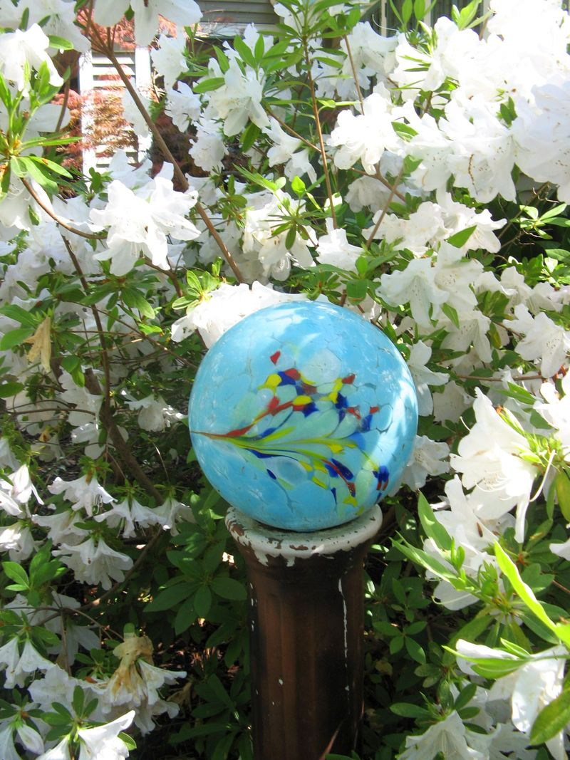 Athens Georgia Garden Tour 2013 white azalea blue glass ball